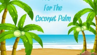 Coconut oil get all the love these days. But what about the rest of the coconut palm? Did you know that there are over 165 uses for the coconut palm? Check them out from HybridRastaMama.com.