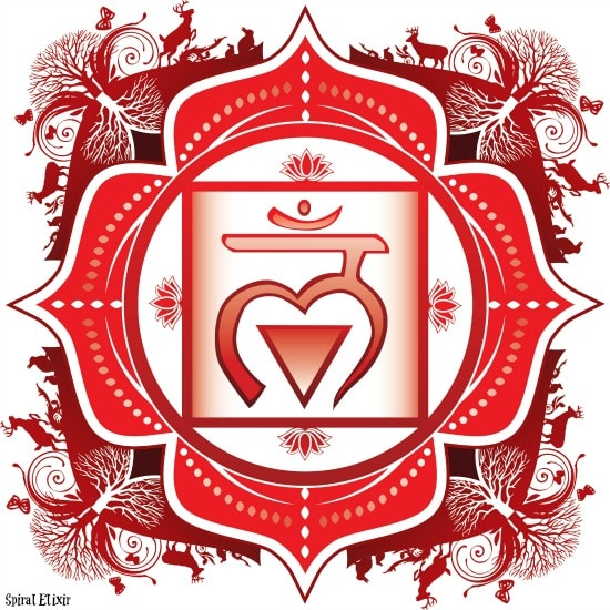Root Chakra Awareness