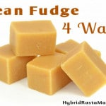 Bean Fudge Gone Wild – 4 delicious and healthy fudge recipes! (GAPS, Gluten Free, Grain Free, Paleo, Dairy Free, Vegan)