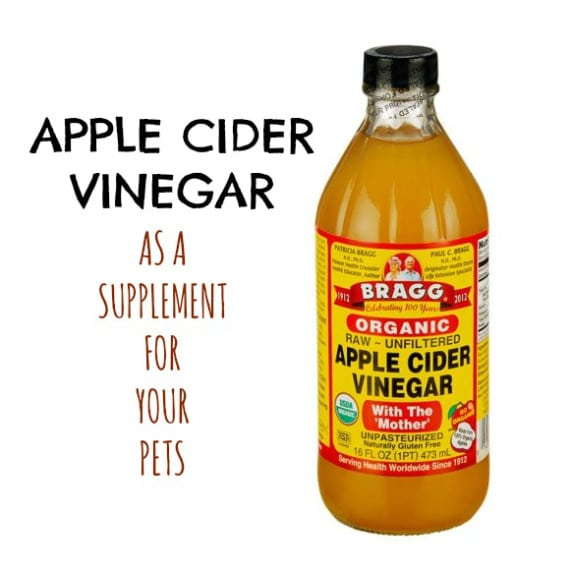 Apple Cider Vinegar For Dogs and Cats