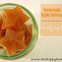 Homemade Strawberry Apple Gummy Fruit Snacks