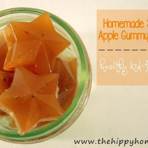 What kid doesn't like fruit snacks? And gummies? And strawberries and apples? Let's put these all together and make some healthy gummy fruit snacks! From HybridRastaMama.com