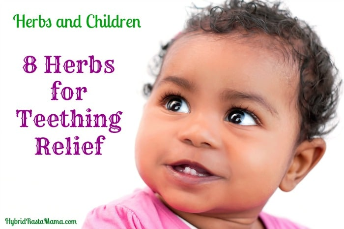 Herbs And Children Eight Herbs For Teething Relief Two