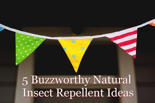 Natural Insect Repellent Essential Oils