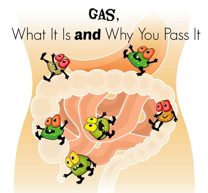 Intestinal Gas – What Causes Gas and Why You Pass It