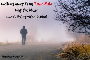 Toxic mold in your home? Health problems? Not sure what to do? Walking away from toxic mold and leaving everything behind might be necessary. Learn why from HybridRastaMama.com.