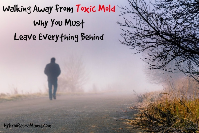 Toxic mold in your home? Health problems? Not sure what to do? Walking away from toxic mold and leaving everything behind might be necessary. Learn why from HybridRastaMama.com