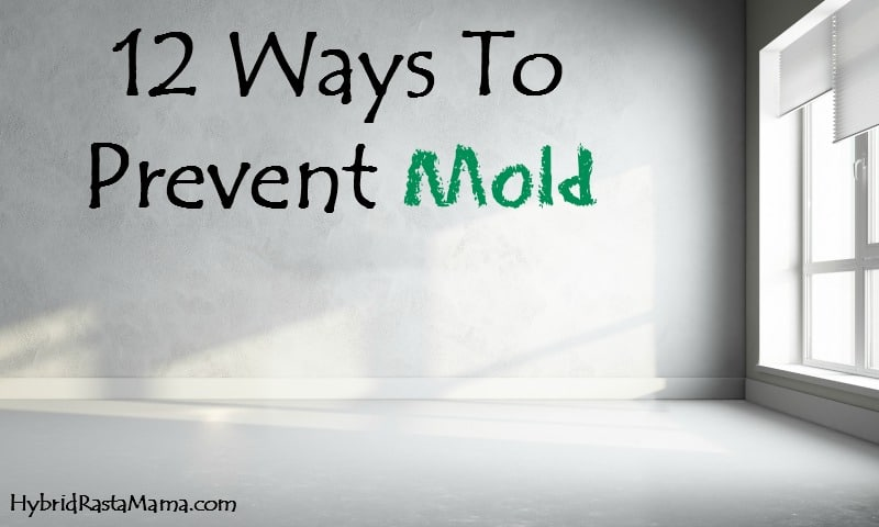 12 Ways To Prevent Toxic Mold from HybridRastaMama.com