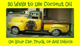 Coconut oil is not just for people and pets! Did you know that there are 30 ways to use coconut oil on your car, truck, or any vehicle? Check it out from HybridRastaMama.com.