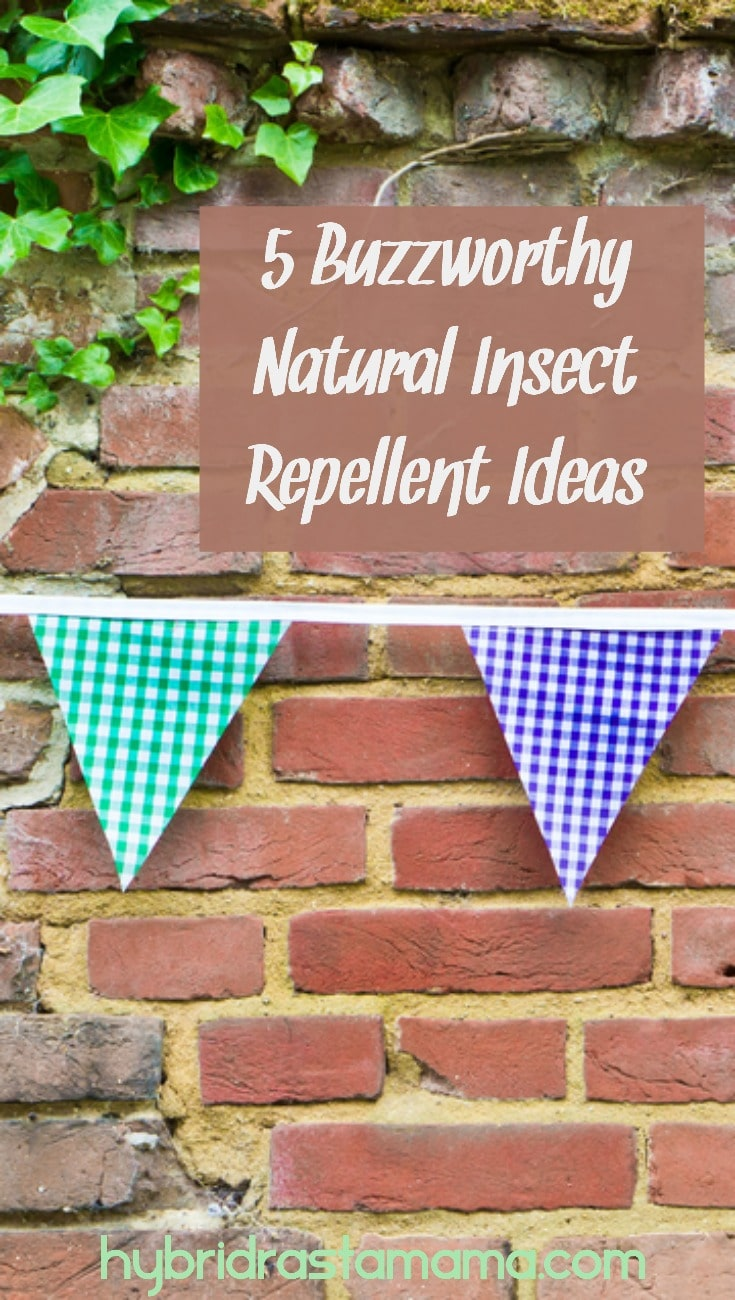 How would you like to stylishly decorate to repel insects with plants and other safe materials, and offer family, friends and loved ones a subtle, non-toxic, natural insect repellent to help ward off bites? Here are 5 buzzworthy natural insect repellent ideas to rock your bug-ridden world! From HybridRastaMama.com