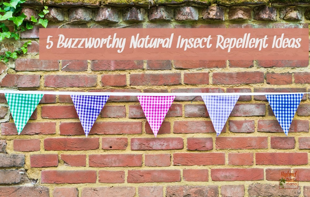 Colorful gingham bunting against a red brick wall