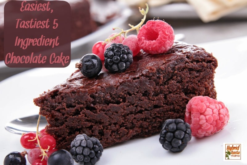 Easiest, Tastiest 5 Ingredient Chocolate Cake!