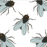 Illustration of house flies on white background