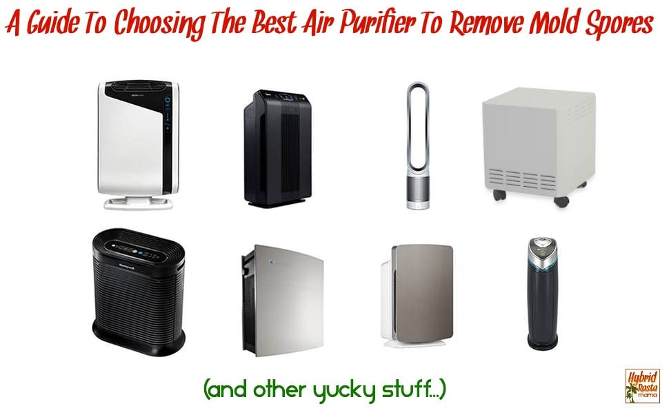 I haven't talked about choosing an air purifier let alone an air purifier to remove mold spores. Seems absurd considering an air purifier is one of the most important investments you can make if you have been exposed to mold in the past or are currently being exposed to mold. Choosing an air purifier to remove mold spores is extremely important though as it can make a huge difference in your health both by helping to lesson your mold exposure symptoms as well as prevent them all together. So how does one go about choosing the best air purifier to remove mold spores? I have outlined all of the important points to consider and provided as much information as I can (based on both my personal experience and research). From HybridRastaMama.com