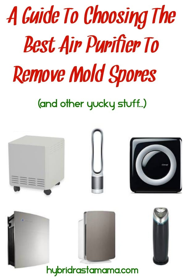Collage of 8 different air purifiers to remove mold spores