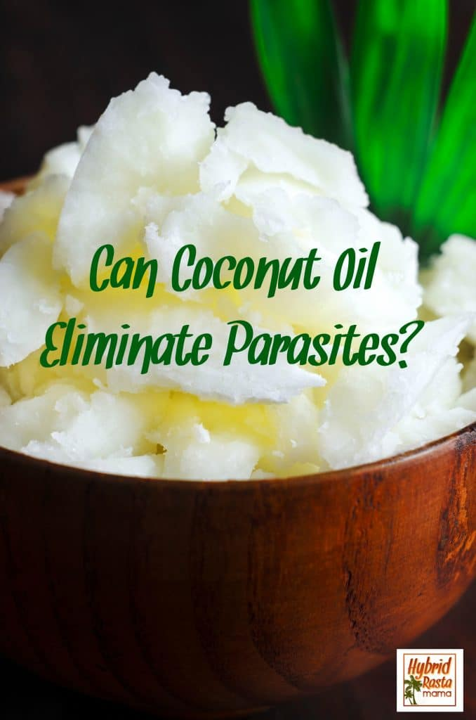 Everyone has parasites. It's a fact of life. Check out how coconut oil might help you stay parasite free in this informative post from HybridRastaMama.com