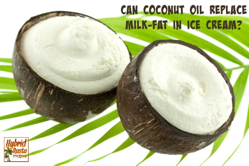 Can Coconut Oil Replace Milk Fat In Ice Cream + Berry Ice Cream Recipe