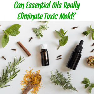 "Essential oils and herbs with the words ""can essential oils really eliminate toxic mold?"""