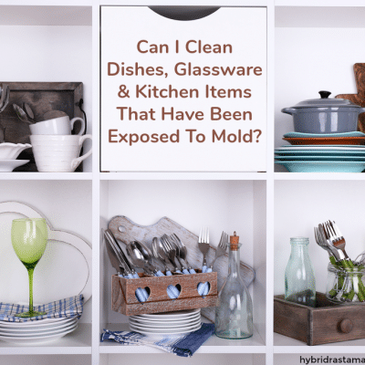 Moldy Dishes – Can I Clean Dishes, Glassware & Kitchen Items That Have Been Exposed To Mold?