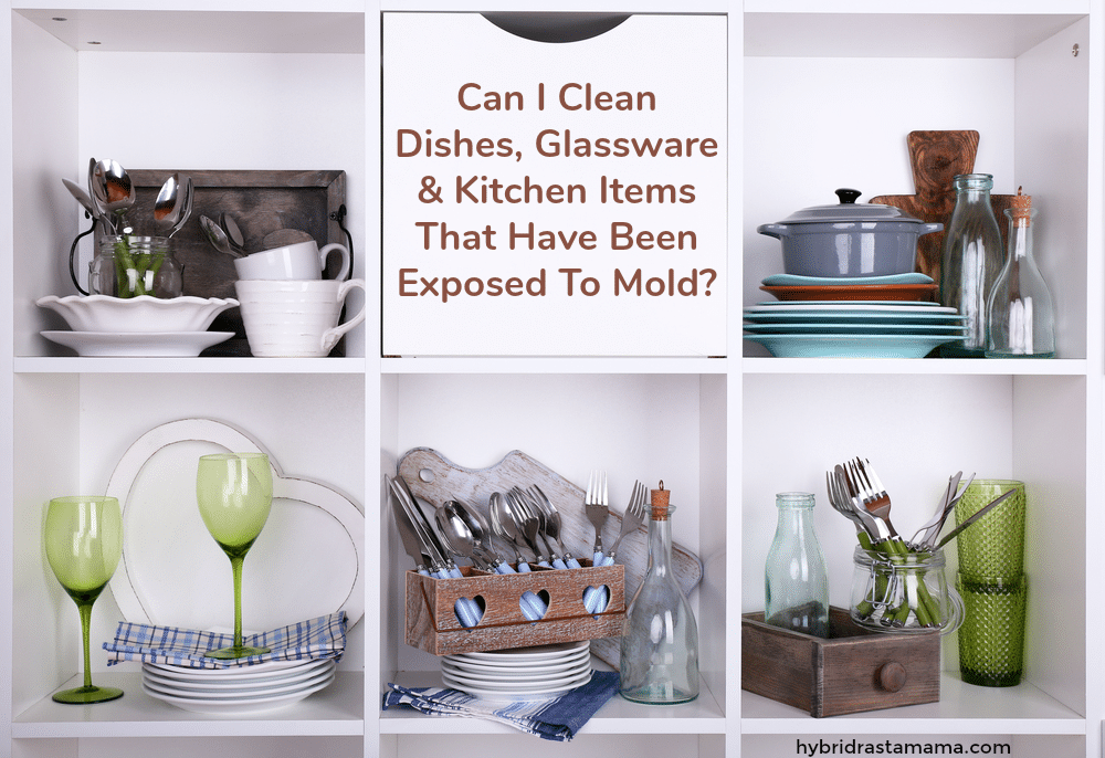 A white storage cube full of dishes and other kitchen items that have been exposed to mold.