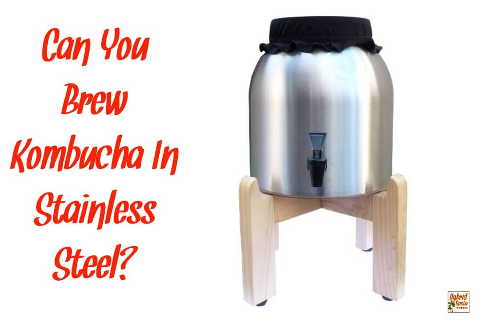 Can you brew Kombucha in stainless steel? Yes you can but there are a few very important things you need to know before getting started.