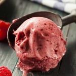 Can Coconut Oil Replace Milk Fat In Ice Cream? (Plus A Berry Delicious Ice Cream Recipe)