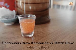 A glass kombucha crock in use for continuous brew kombucha