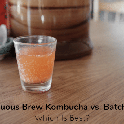 Continuous Brew Kombucha vs. Batch Brew