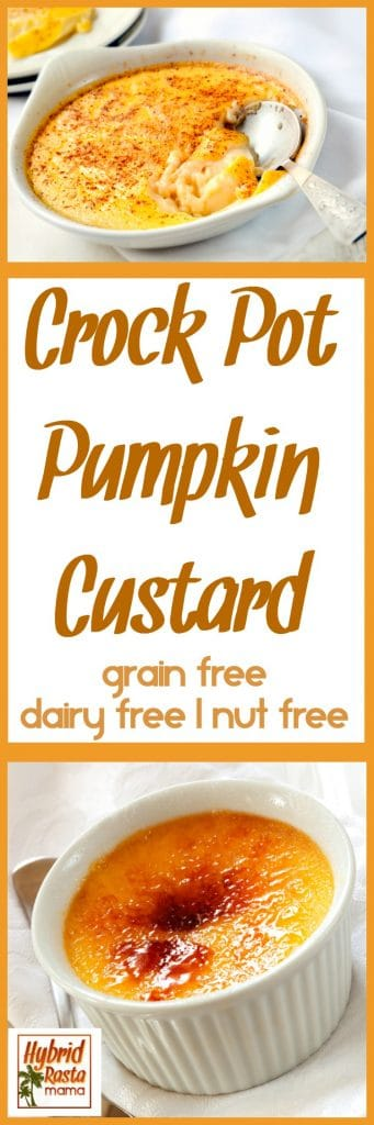 The flavors of fall...the textures and warmth that we love this time of year. Pumpkin custard is the nourishing treat you've been waiting for. This pumpkin custard is dairy free and gluten free! Try it from HybridRastaMama.com.