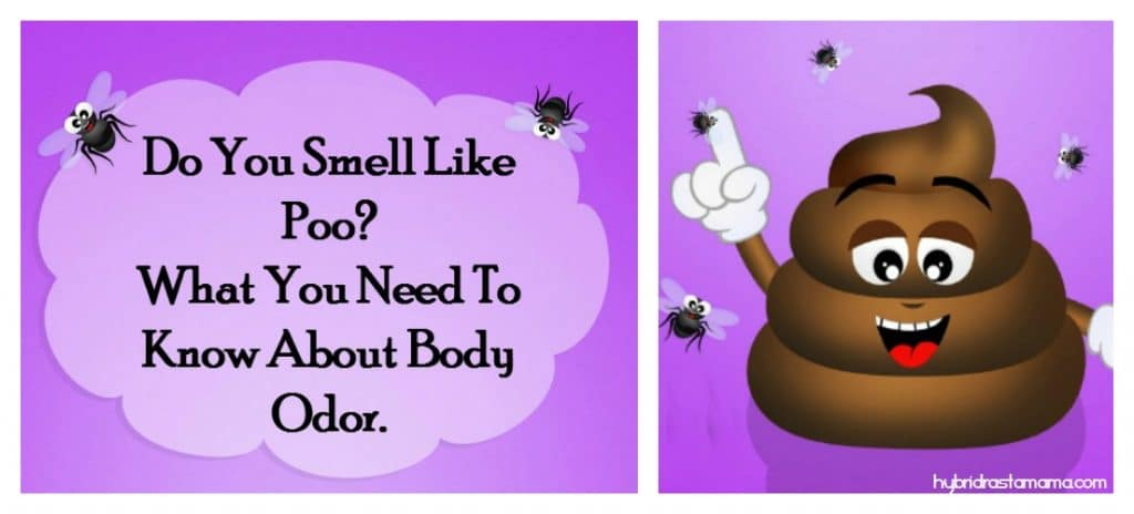 """A poop cartoon with flies surrounding it. A sign next to it with the words """"do you smell like poo? What you need to know about body odor."""""""