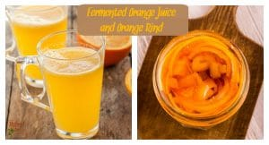 Love oranges? Love fermented foods? Then try these crazy delicious recipes for fermented orange rind and fermented orange juice (2 ways). Yumminess from HybridRastaMama.com.