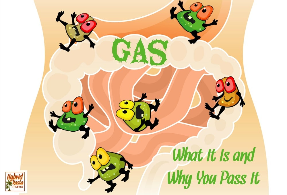 Gas bugs in the digestive system