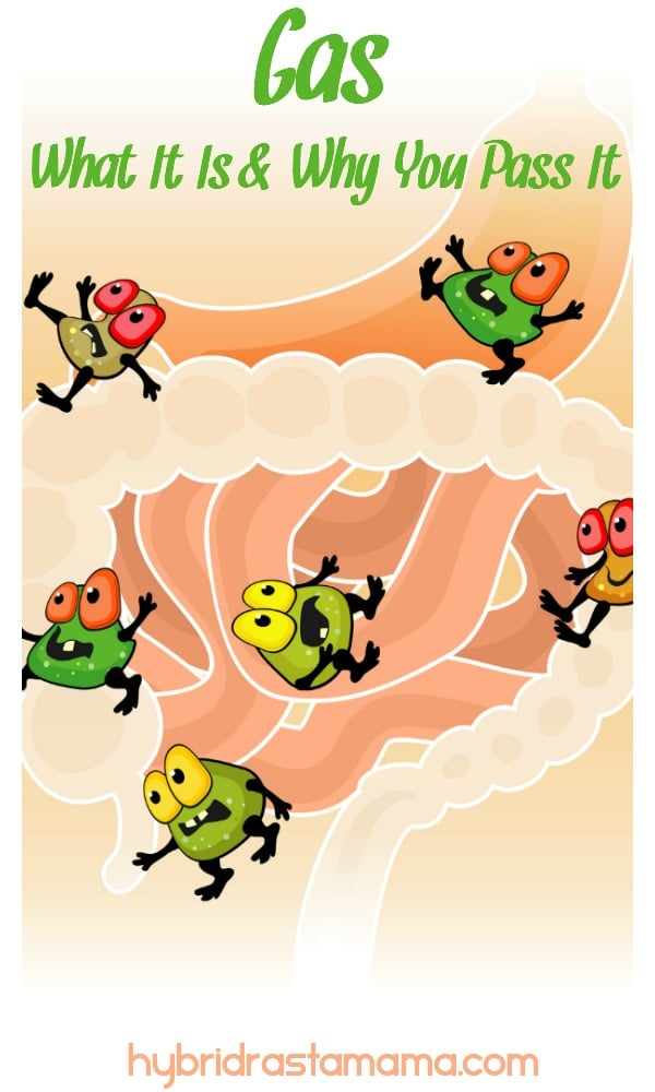 Intestinal gas bugs in the digestive system