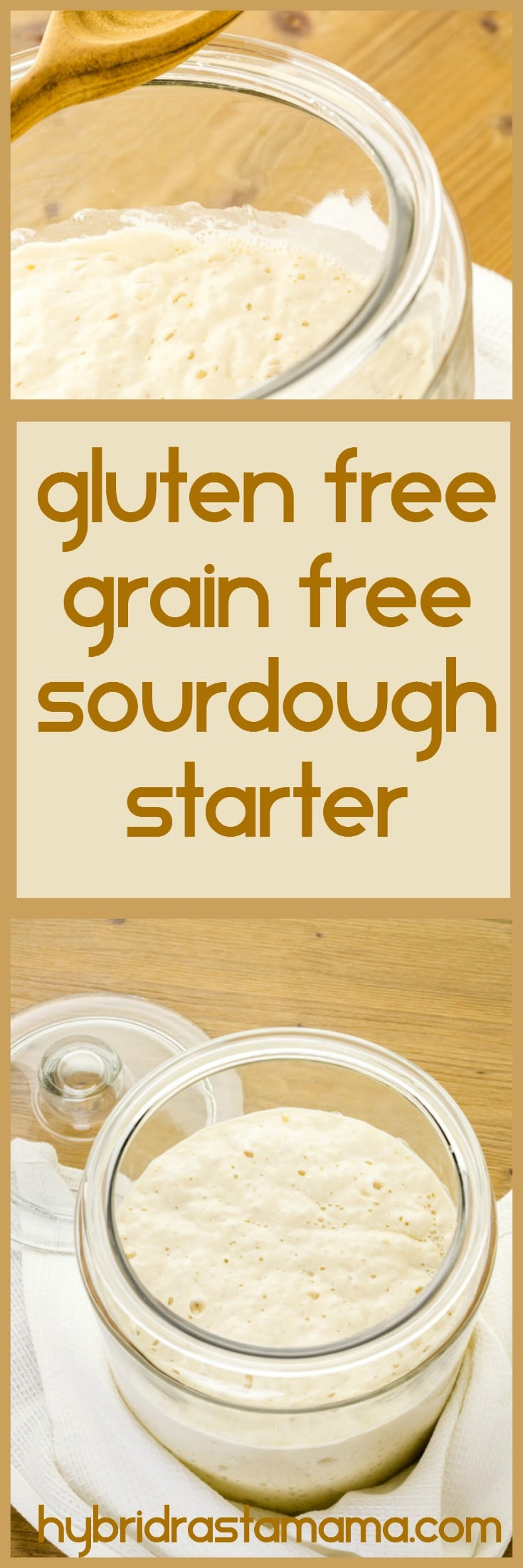 This Gluten Free, Grain Free Sourdough Starter is so easy anyone can make it. Plus it makes the perfect base for gluten free, grain free sourdough bread. Grab the recipe from HybridRastaMama.com #sourdough #sourdoughbread #bread #breadrecipe #homemadebread #glutenfreebread #glutenfreerecipes #recipes