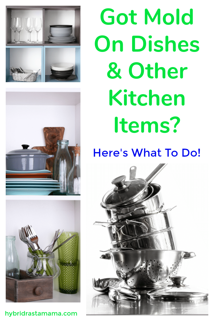 "Pots and pans, dishes, silverware, glassware, and other kitchen items on a shelf. To the left it says ""moldy dishes and other kitchen items? Here's what to do!"""