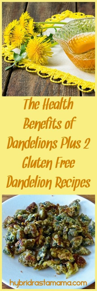 Learn about the health benefits of dandelions plus two great recipes for Fried Dandelion Flowers and Candied Dandelion Flowers! From HybridRastaMama.com.