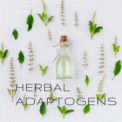 Why You Should Be Using Adaptogens