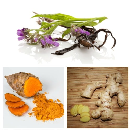 Comfrey root and flowers, ginger root and slices, and tumeric root and slices - herbs for back pain relief