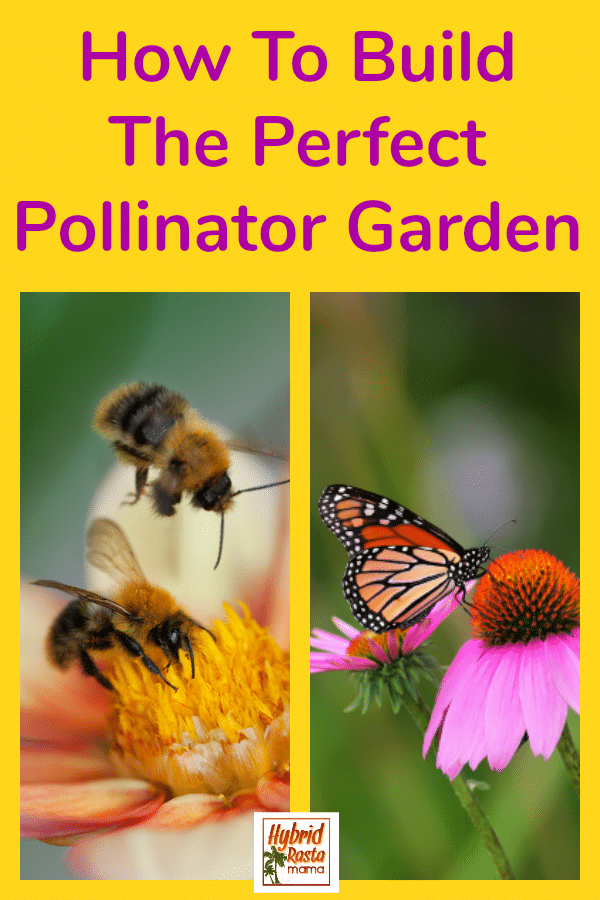 How to build the perfect pollinator garden layout collage