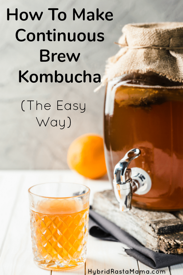 A glass kombuch crock in use for continuous brew kombucha