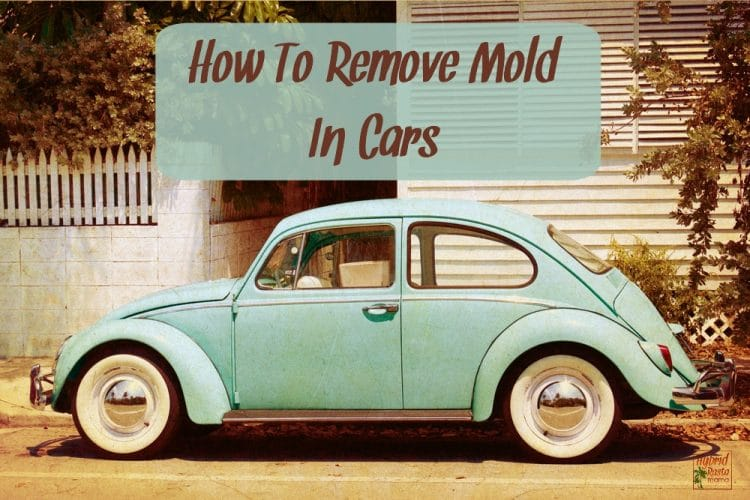 A classic teal green VW bug parked in front of a white house with a white picket fence. How to remove mold in cars in written above the bug.