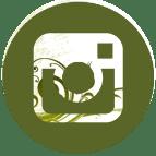 Hybrid Rasta Mama's Instagram Icon