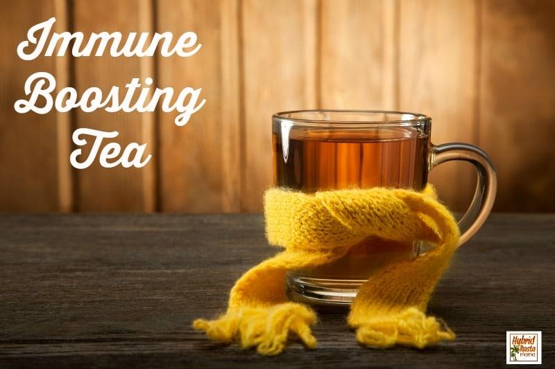 Immune Boosting Tea from HybridRastaMama.com