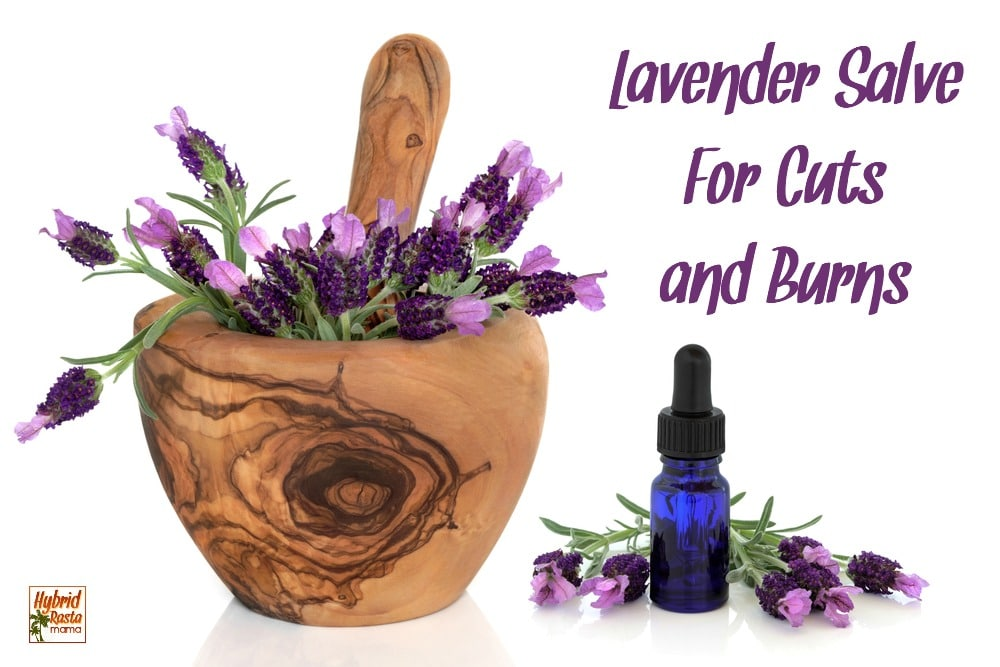 A morter and pestle with lavender in it and a bottle of lavender essential oil for burns and cuts