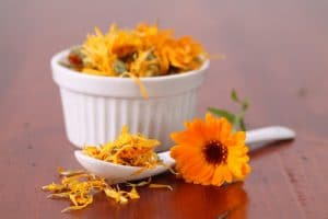Close up of dried marigolds in a white ramikan