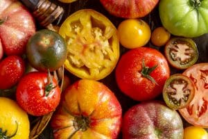 Colorful assortment of fresh organic whole and cut heirloom tomatoes sitting on wooden table
