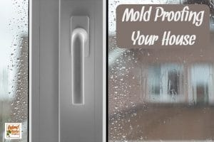 Looking out a rainy window at a brown house to mold proofing your home