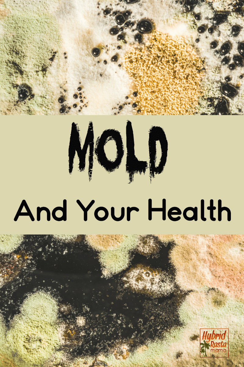 A moldy background with the words Mold and Your Health overlayed