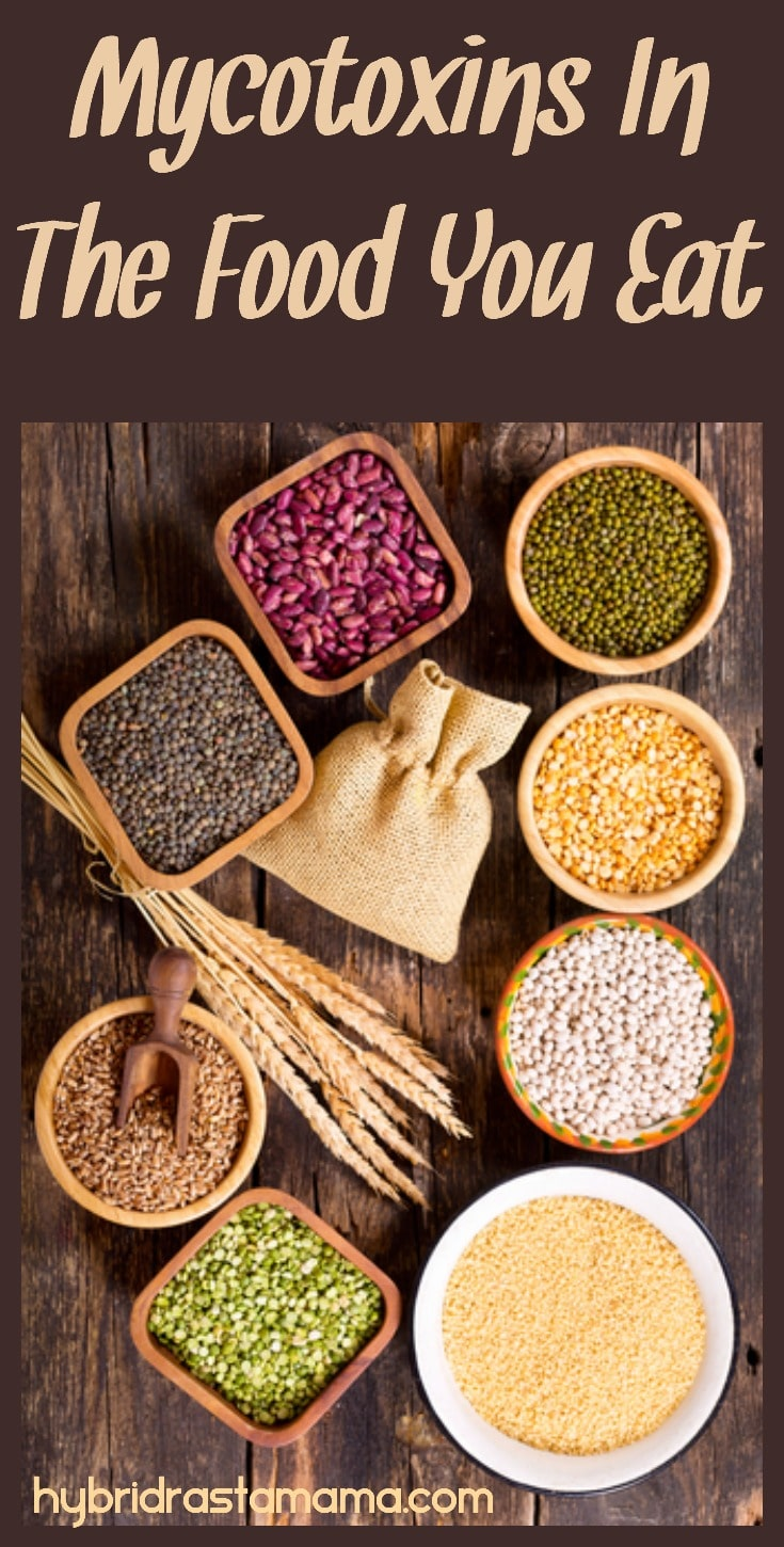 Are certain foods causing you health issues but you aren't sure why? Do you feel unwell after eating certain foods? Learn more about mycotoxins in food you eat and what foods are the worst offenders from HybridRastaMama.com. #mycotoxins #foodallergies