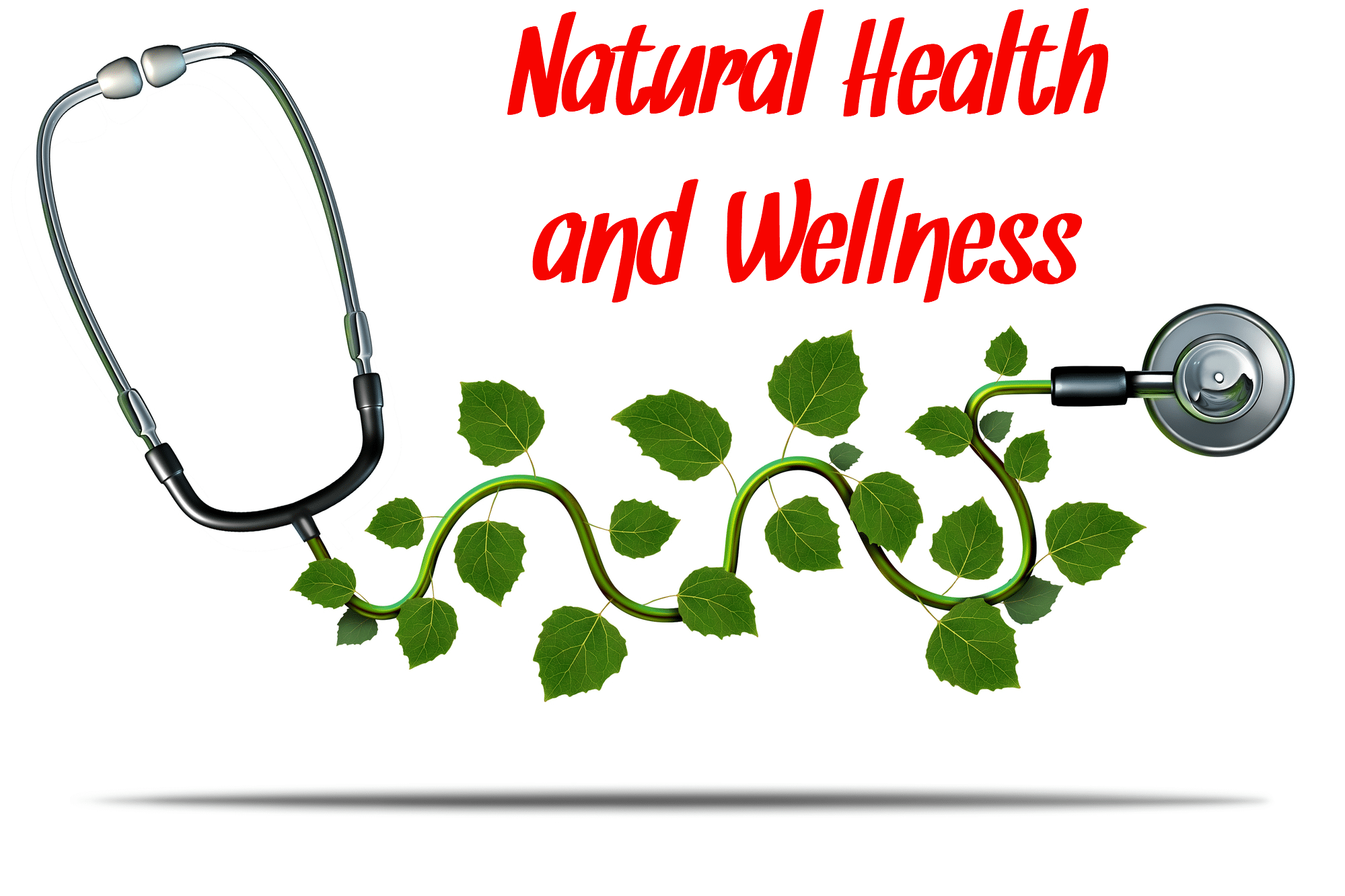 Natural health and wellness icon of a stethescope with herb leaves